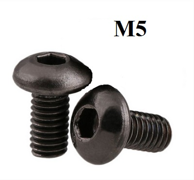 M5x10 mm screw. Hexagon button head. (2 pcs)