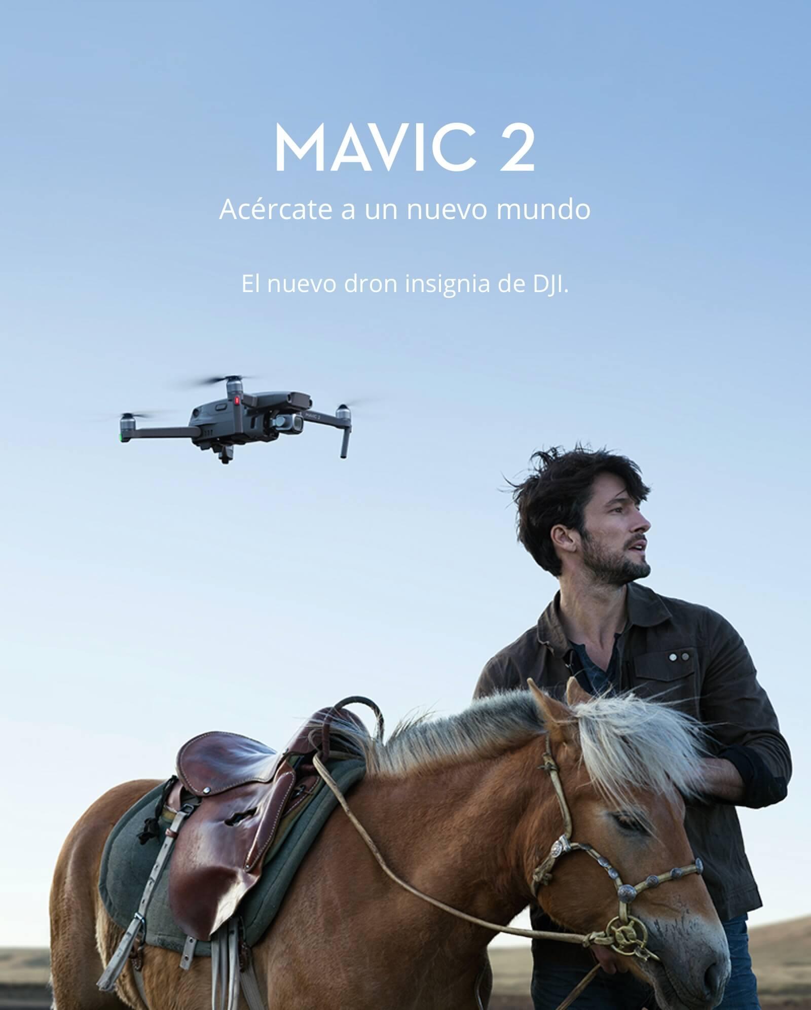 Mavic_2_pro_a.jpg